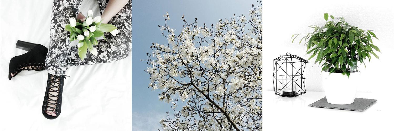 Bezaubernde Nana, bezauberndenana.de, Nana's Monthly Review, Instagram Monatsrückblick April, Monatsrückblick April 2016, Instagram