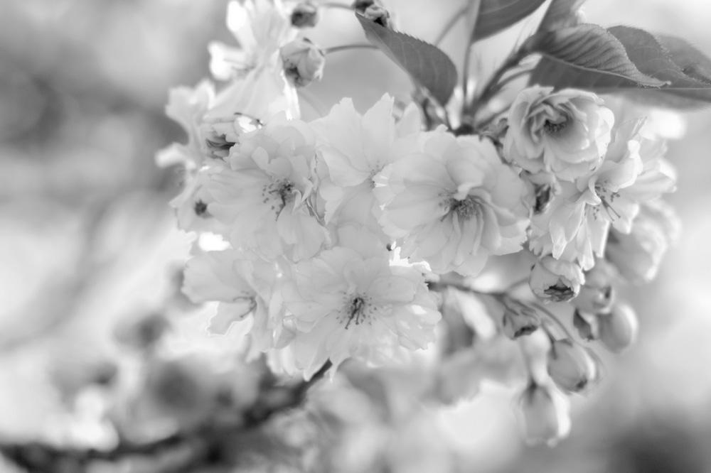 März Favoriten & Monatsrückblick