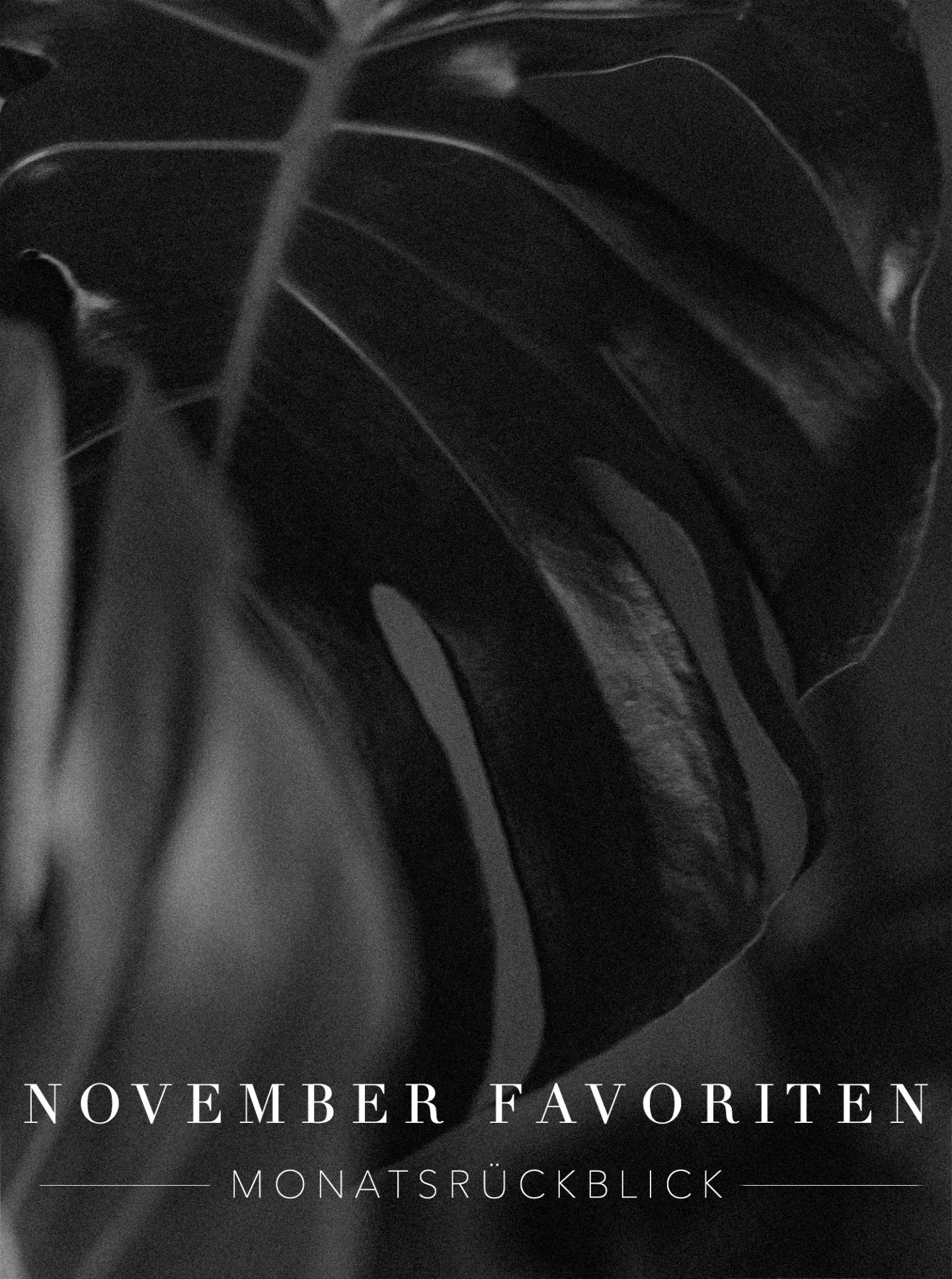 November Favoriten & Monatsrückblick