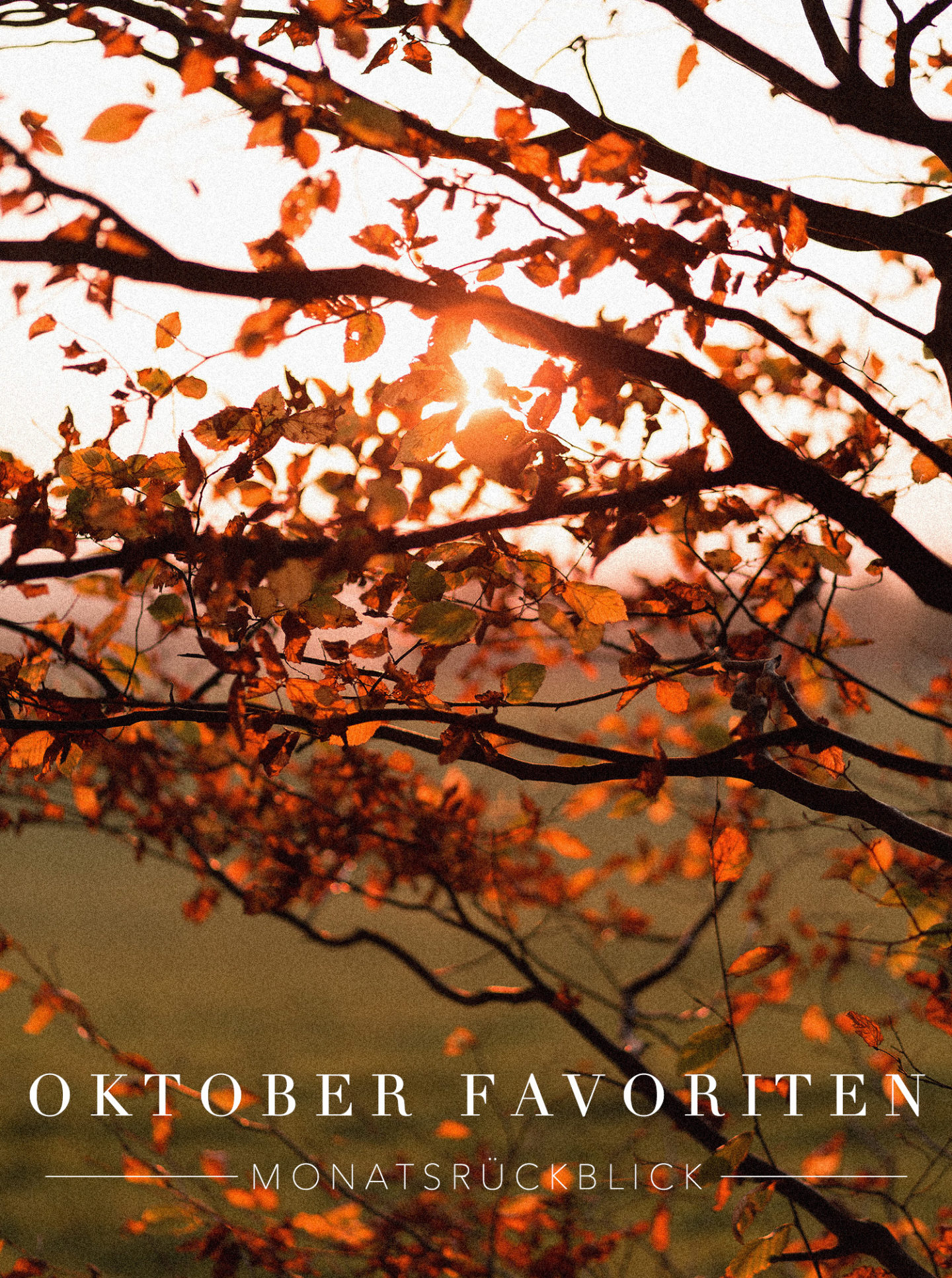 Oktober Favoriten & Monatsrückblick